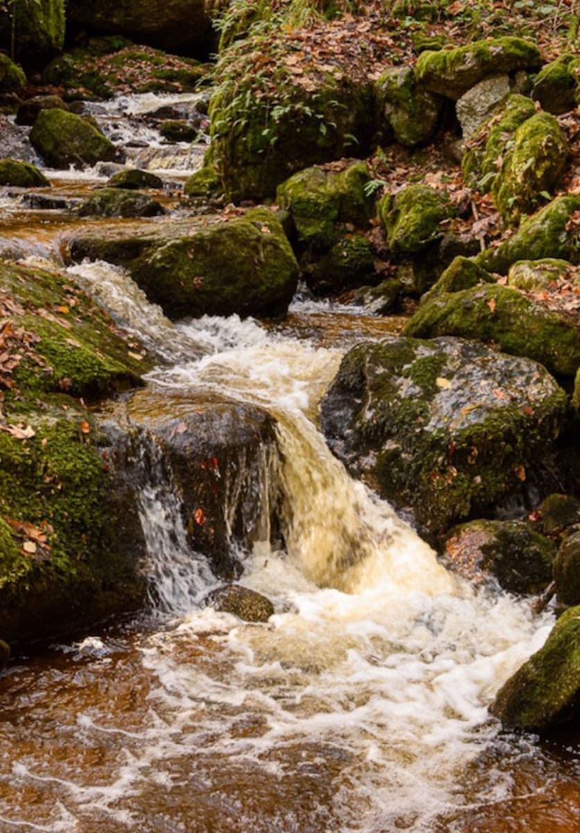 Wasserfall im Harz fotografiert mit manuellen Kameraeinstellungen mit kurzer Verschlusszeit
